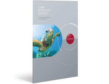 Loan Portfolio Service brochure